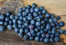 bild-på-blåbär