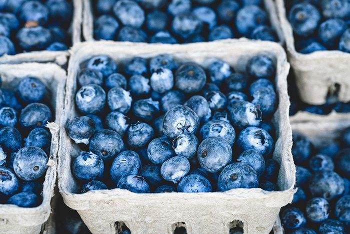 Bild-på-massa-blåbär